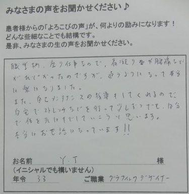 voice13