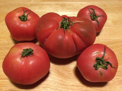 大きなトマト